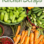 Great Ways To Use Kitchen Scraps